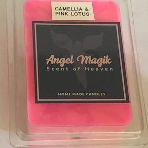 Camellia Pink Lotus